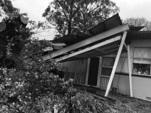 asbestos roof removal Adelaide